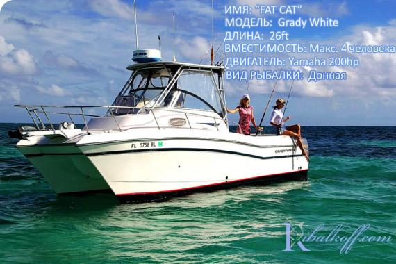 catamaran dlya donnoy rybalki v Punta Cana 2020