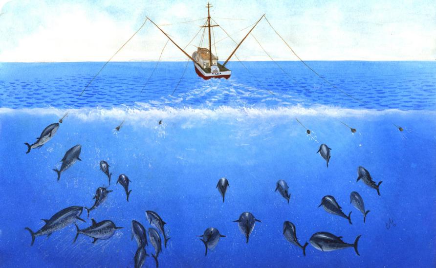 Рыбалка троллингом схема-рисунок как ловить